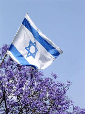 Blooming Jacaranda tree and Flag of Israel in park in Ramat Gan, Israel Banco de Imagens