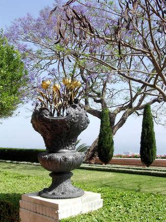 bahai: Vase with metallic tulips in Bahai Gardens in Haifa, Israel