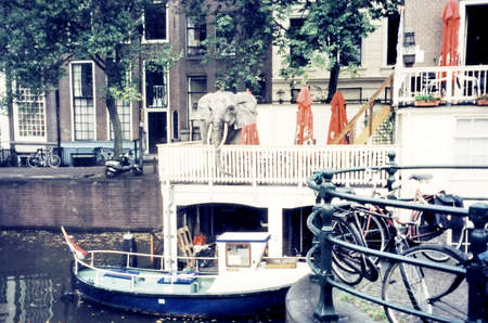 gabled house: The elephant sculpture on the canal bank in Amsterdam, Netherlands