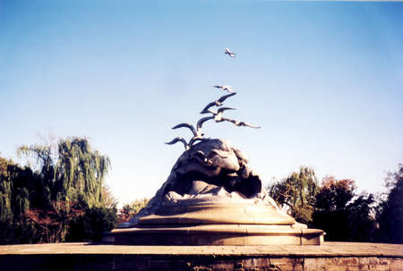 marine bird: The Navy-Merchant Marine Memorial is located in Lady Bird Johnson Park, Columbia Island, in Washington DC, in 2000, USA Editorial