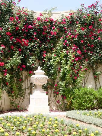 akko: Corner of flowers in Bahai garden near Akko, Israel