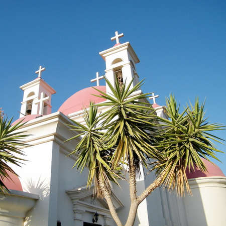 kefar: Palms near Greek Orthodox Church of the Seven Apostles in Kapernaum on the shores of Sea of Galilee in northern Israel