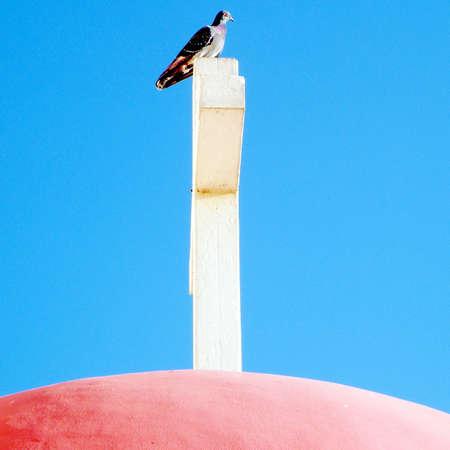 kefar: Dove on the cross of Greek Orthodox Church in Kapernaum, Israel