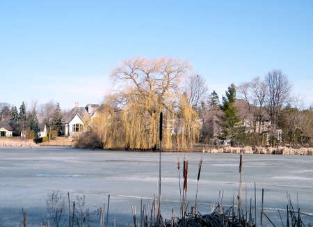 oakbank: Frozen Oakbank Pond in Thornhill,Canada Stock Photo