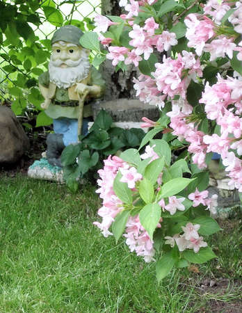 thornhill: gnome sculpture and flowers in Thornhill, Canada