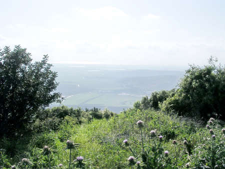galilee: The view of landscape in Western Galilee, 2004 Israel