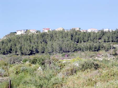 galilee: The view of village in Western Galilee, 2004 Israel