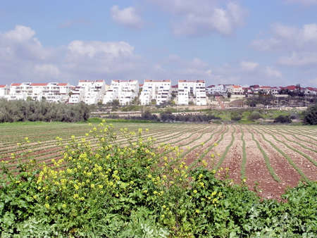 View of field and town Shoham, February 2004 Israe Banco de Imagens - 54659797