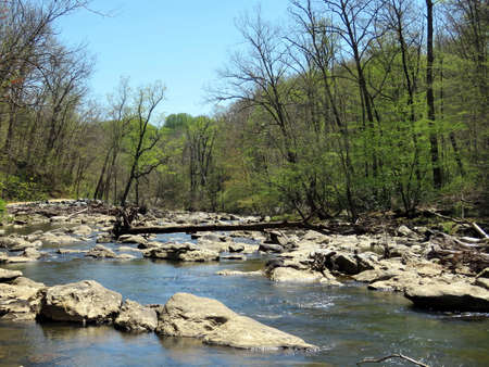 washington landscape: Landscape of Mine Run Branch River tributary of the Potomac River near Washington DC