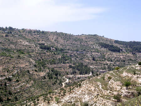 hillsides: The view of hillsides in Jerusalem, Israel, May 16, 2005