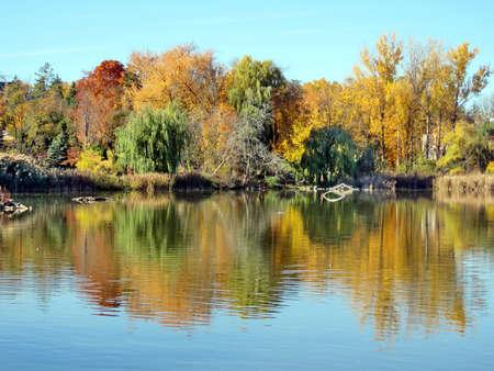 thornhill: Autumn pond in Thornhill, Canada, November 6, 2016