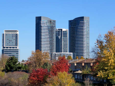 Trees and buildings in Thornhill, Canada, November 6, 2016