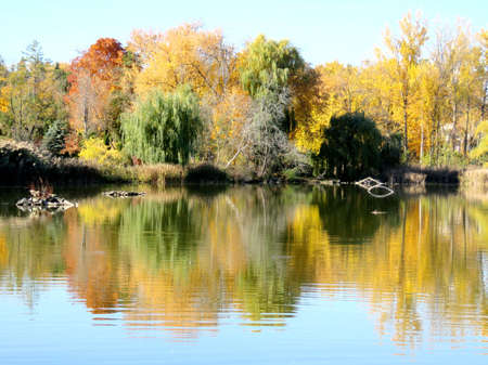 thornhill: View of autumn pond in Thornhill, Canada, November 6, 2016