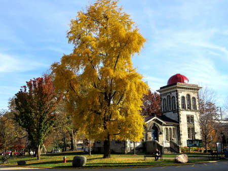 magnetic stones: Magnetic and Meteorological Observatory at the University of Toronto, in Toronto, Canada, November 18, 2016 Editorial
