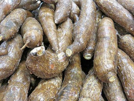 Cassava on market in Thornhill, Canada, March 26, 2018                                Stock fotó