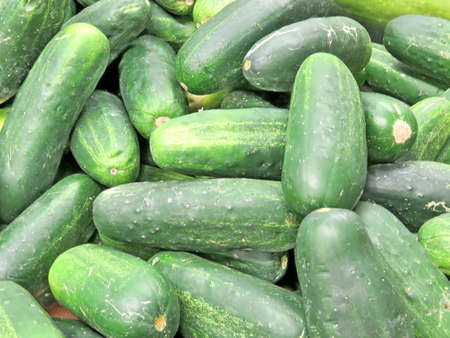 Cucumbers on market in Thornhill, Canada, March 26, 2018