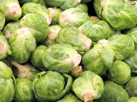Brussel sprout on market in Thornhill.