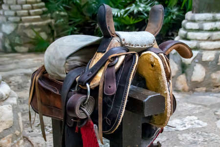 Leather horse harness on a wooden post close-up