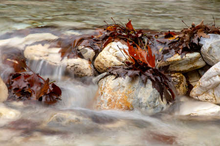 Mountain stream flowing between the stones and greeted with brown autumn leaves Greece Reklamní fotografie