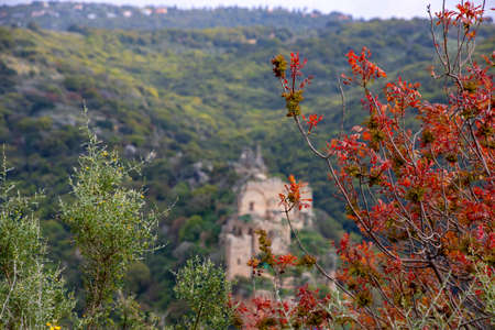 View of the Crusaders castle Montfort in the mountains of Galilee. Israel 写真素材