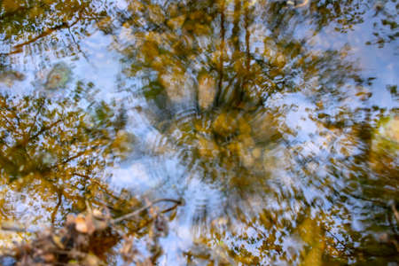 Reflection of trees in the water of a stream with spherical circles from falling raindrops. Landscape 写真素材