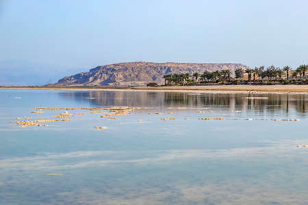 Reflection of mountains and palm trees in the salty water of the Dead Sea. Landscape