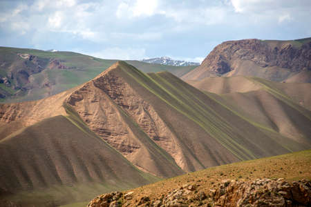 Hills covered with young grass against the sky and snow-capped mountain peaks. Travel. Kyrgyzstan.