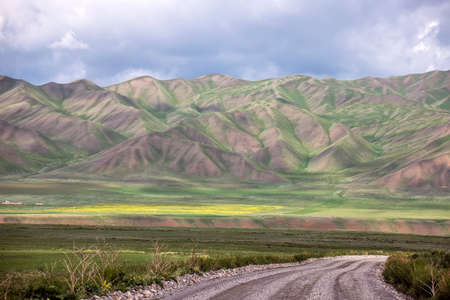 Gravel road between flowering fields and picturesque mountain ranges on the horizon. Kyrgyzstan Naryn region. Stock Photo - 128705180