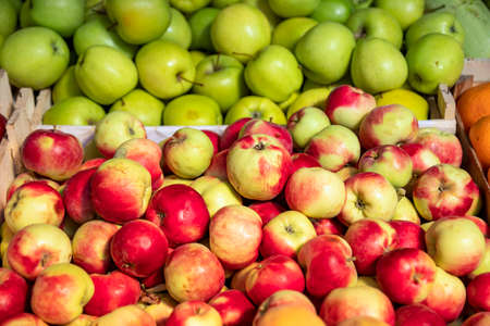 Red and green ripe apples in boxes close up on the market Stock Photo