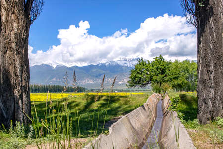 Aryk with water between trees and agricultural fields against the backdrop of mountains and sky with clouds. Issyk-Kul region Kyrgyzstan