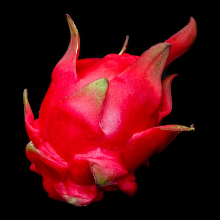 Ripe red pitaya fruit closeup isolated on black background.