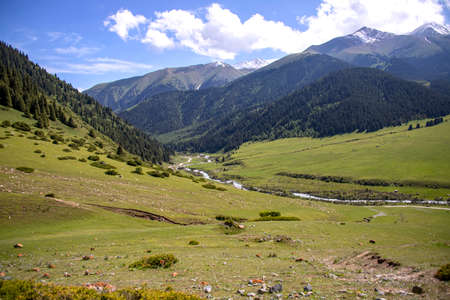 Mountain river flowing through a green valley between hills covered with forest against a cloudy sky. Kyrgyzstan