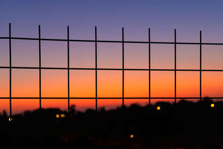 A view through the net on plant silhouettes against a colorful sunset sky. Israel.
