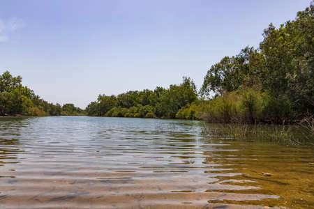 Riverbank with sandy bottom and eucalyptus trees along the banks