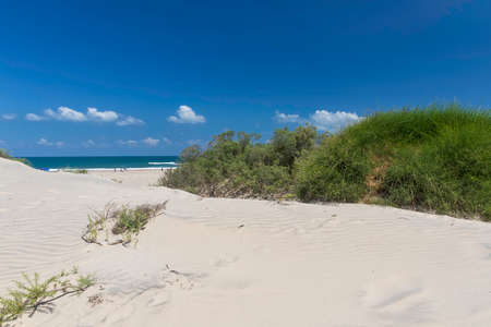 View of the Mediterranean Sea and the sky with clouds through the white sand dunes with green bushes Stok Fotoğraf
