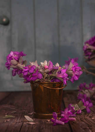 Pink flowers of Green Cloud Texas Sage close-up in a metal bucket on wooden boards