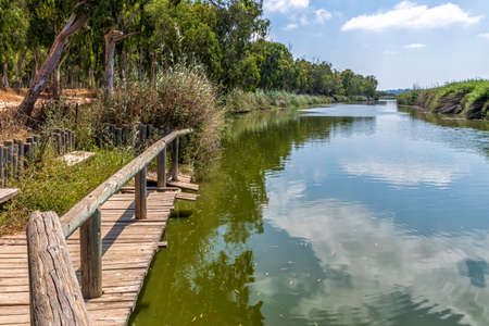 Pier on the Alexander River in Israel with eucalyptus trees along the banks and the reflection of clouds in the water