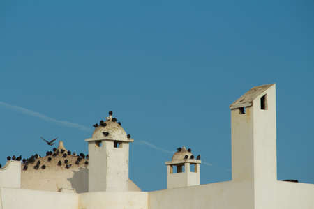 Spains architectural structures with a beautiful blue sky and birds