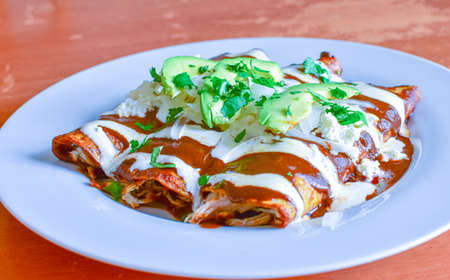 Delicious enchiladas of great Mexican food, mole and cheese,typical mexican food. Reklamní fotografie