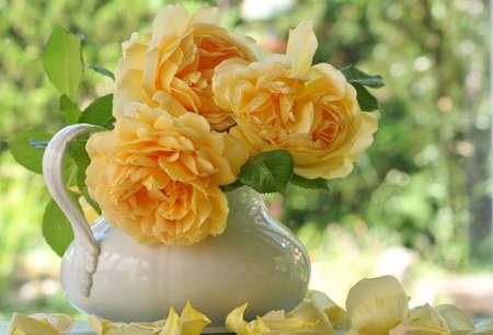fond: Trois roses jaunes sur fond nature