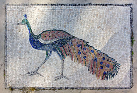 blue peafowl: Outdoor Mosaic of a Peacock