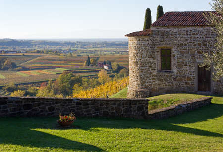 vineyard plain: Autumn landscape in the Collio region, Italy Stock Photo