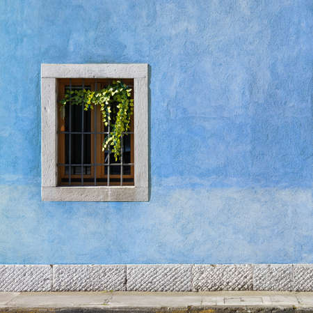 Exterior wall of a historic building painted in blue, with a window decorated with vines 写真素材