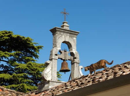 Cat on the roof of a church next to the small bell tower Reklamní fotografie