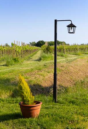 Lamppost next to a flowerpot against a rural landscape