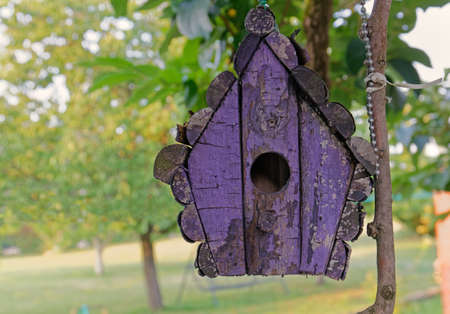 Close-up of a purple wooden bird house in a garden 写真素材
