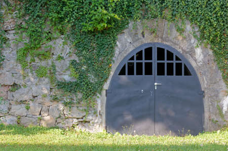 Entrance to a service tunnel on an ivy covered wall of an old building
