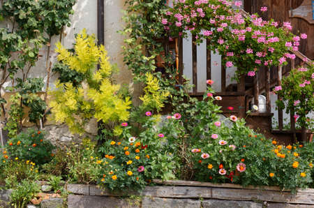 Plants and flowers decorating the exterior of a traditional country house Archivio Fotografico