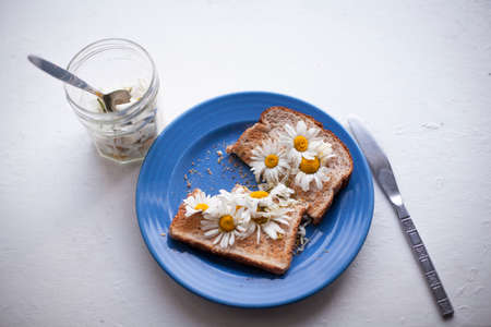 Ox-eye daisies on toast on a rustic white counter top Stock Photo
