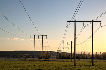 trailing: Electricity Pylons Trailing Away in Field